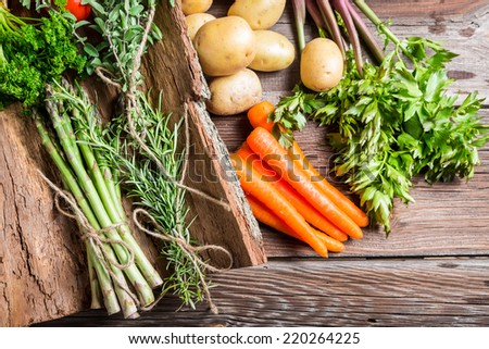 Fresh various vegetables on bark - stock photo