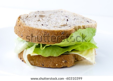 Fresh vege cheese sandwich with brown bread - stock photo