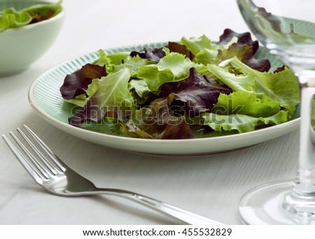 Fresh vegetable diet salad - stock photo