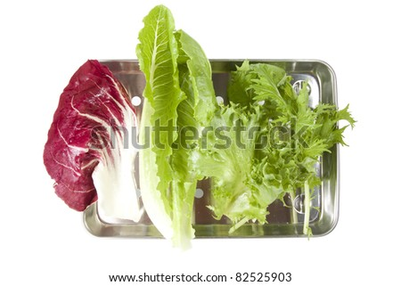 fresh vegetable, fresh lettuce, raddichio and mizuna vegetable in tray. - stock photo