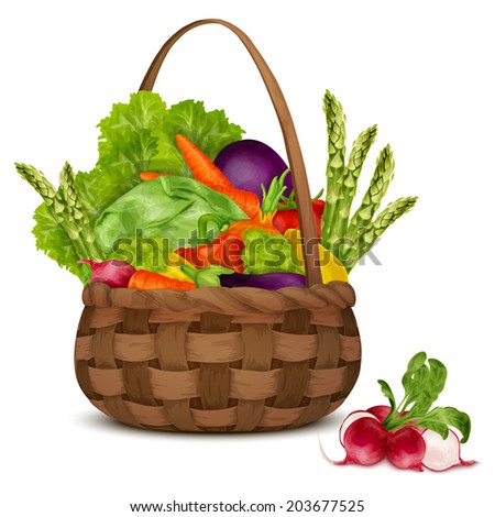 Fresh vegetable organic food set still life in basket isolated on white background  illustration