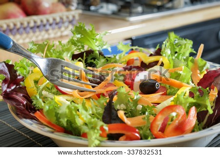 fresh vegetable salad - natural healthy diet with green salad leaves and freshly picked tomatoes carrots capsicum and radish - healthy food for weight loss and wellness concept - stock photo