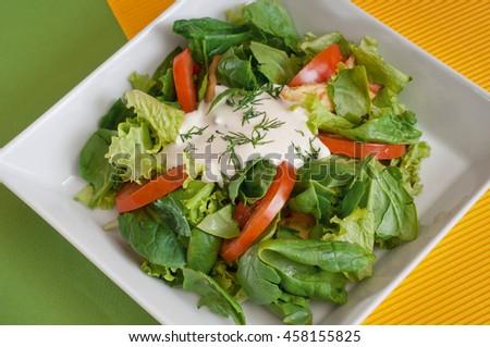 Fresh vegetable salad with sour cream - stock photo