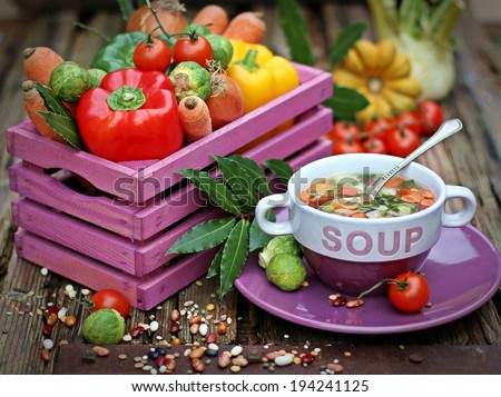 Fresh vegetable soup made of green beans, peas, carrot, potatoes, red bell pepper, tomatoes and cereals - stock photo