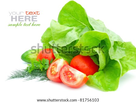 Fresh vegetables and green salad isolated on white background - stock photo