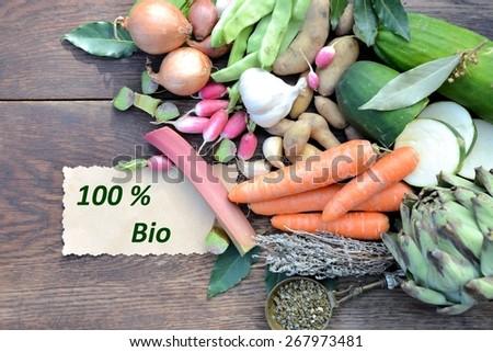 fresh vegetables, bio - stock photo