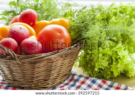 Fresh vegetables covered in basket. Organic Tomatoes pepper radishes dill parsley and vibrant green lettuce from the market.