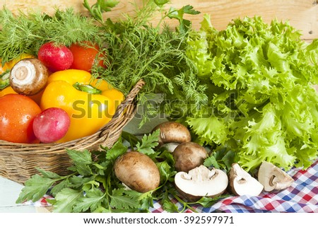 Fresh vegetables covered with water drops in basket. Organic Tomatoes pepper radishes dill parsley mushrooms champignonand vibrant green lettuce from the market. - stock photo