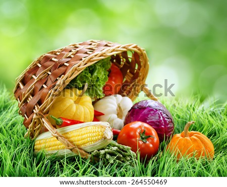 Fresh vegetables falling out of a basket on green grass. Cabbage, chili, asparagus, tomatoes, lettuce and pumpkins on nature background. Healthy food rich in vitamins. Product of organic farming. - stock photo