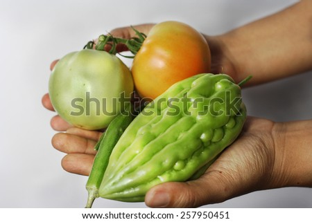 Fresh vegetables in basket. Bitter gourd, tomatoes and okra.Selective focus, soft focus and shallow depth of fields - stock photo