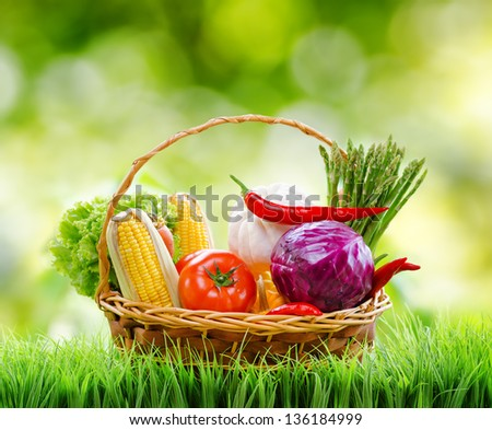 Fresh vegetables in the basket on green grass. - stock photo