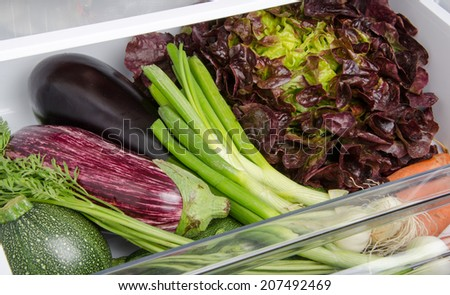 Fresh vegetables in the bottom of the refrigerator - stock photo