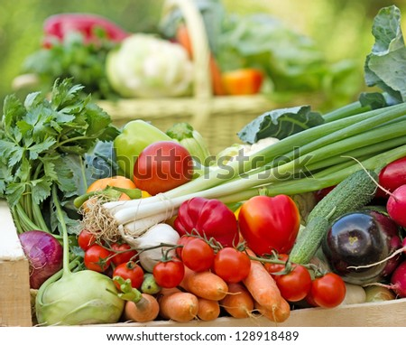 Fresh vegetables in the crates and basket - stock photo