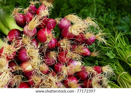 Fresh vegetables on  Salamanca Market , Tasmania, Australia. - stock photo