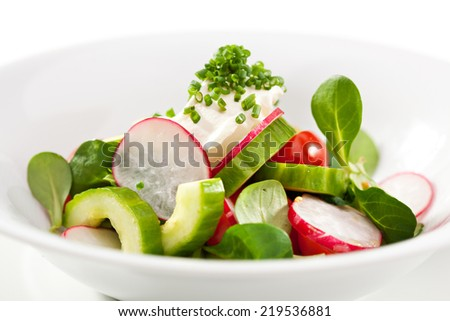 Fresh Vegetables Salad with Sour Cream - stock photo
