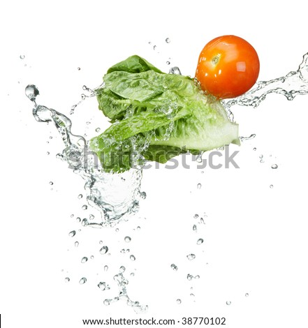 fresh vegetables with water splash on white background - stock photo