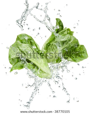 fresh vegetables with water splash on white background
