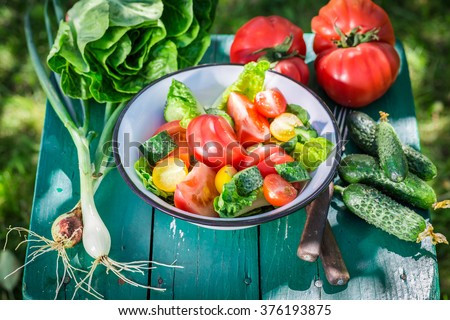 Fresh vegetarian salad from countryside - stock photo