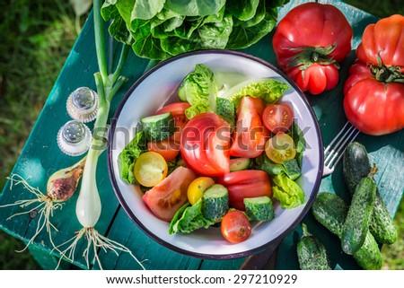 Fresh vegetarian salad in garden - stock photo