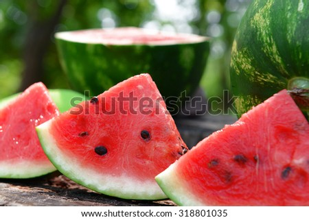 Fresh watermelon on stump of tree, closeup - stock photo