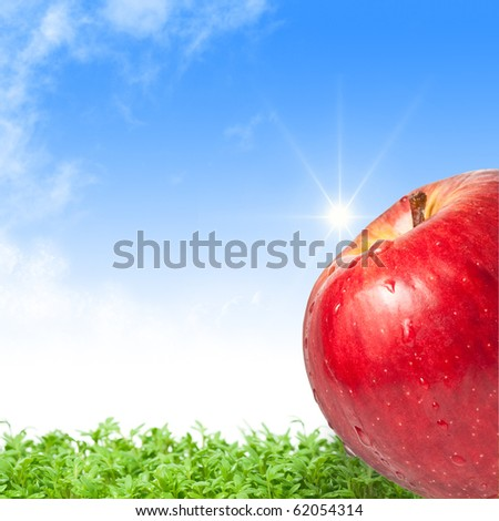 Fresh wet apple against a green field and a sunny blue sky - stock photo