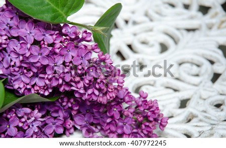 Fresh white and violet lilac flowers in ray of light on white painted wooden planks - stock photo