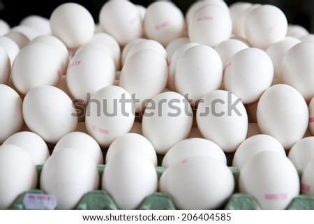 Fresh white eggs on the market - stock photo
