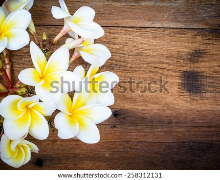 Fresh white flowers put on a brown wood with vintage style - stock photo