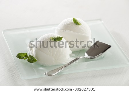 Fresh white ice cream served in a plate.  - stock photo