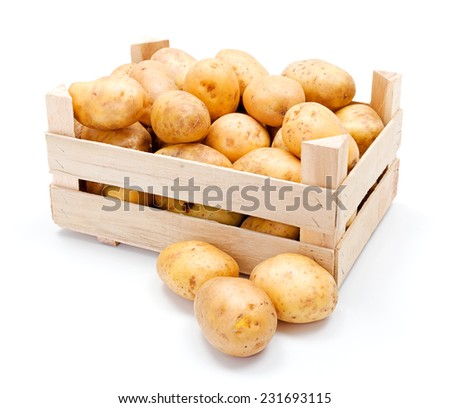 Fresh white potatoes crop in wooden crate