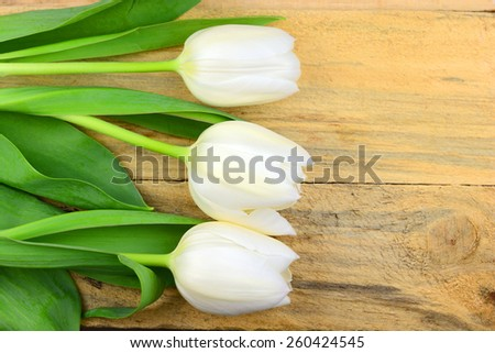 Fresh White tulips on old texture, old wooden background