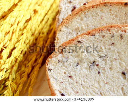 Fresh whole grain bread and yellow ear of rice - stock photo