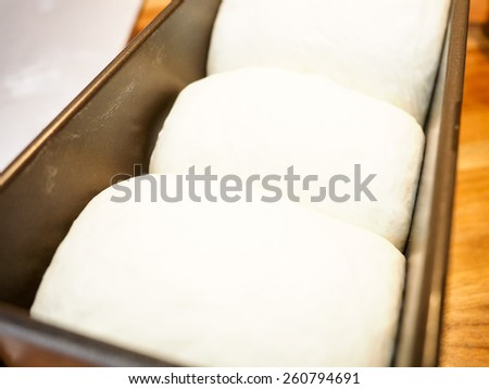 Fresh whole wheat dough in a baking pan - stock photo