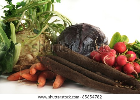 fresh winter vegetables on a white background - stock photo