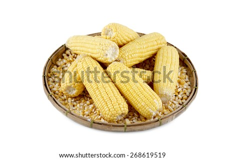 Fresh yellow corn on a woven basket.Isolated in white background. - stock photo