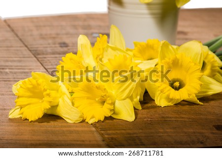 Fresh yellow daffodils with a metal vase on the table - stock photo