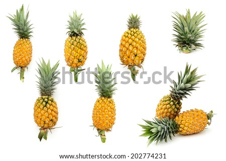 fresh yellow pineapple, rough skin with green leaves - stock photo