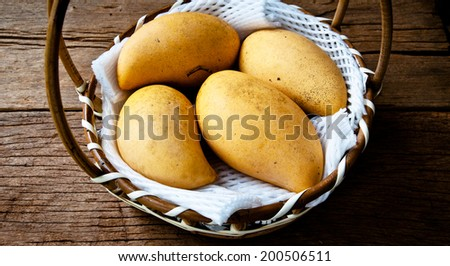 Fresh Yellow Ripe Mango Harvest in Woven Basket with Foam Package on Wood Table Background, Rustic Still Life Style. - stock photo