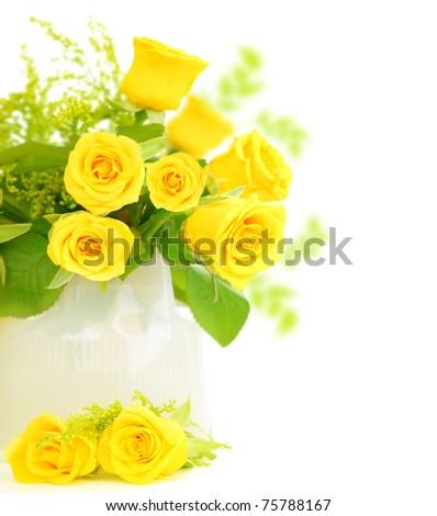 Fresh yellow roses border isolated on white background? - stock photo