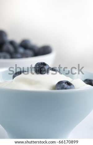 Fresh yoghurt with bleberry in a blue bowl - stock photo