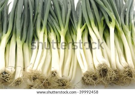 fresh young onion - stock photo