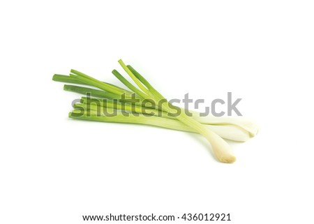 Fresh young onion isolate on white background. - stock photo
