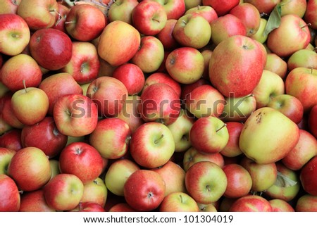 Freshly apples at a local farmers market - stock photo