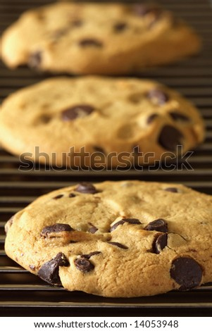 Freshly baked cookies on cooling rack - stock photo