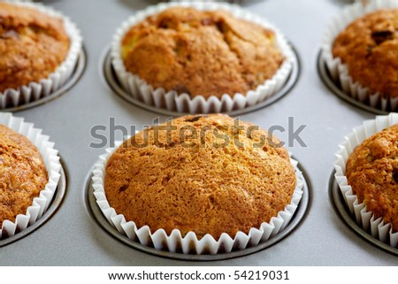 Freshly baked cupcakes - stock photo