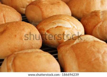 Freshly baked dinner rolls on cooling rack.  Closeup with shallow dof.  Selective focus on center roll.