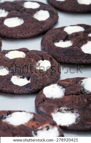 freshly baked double chocolate chip mallows - stock photo