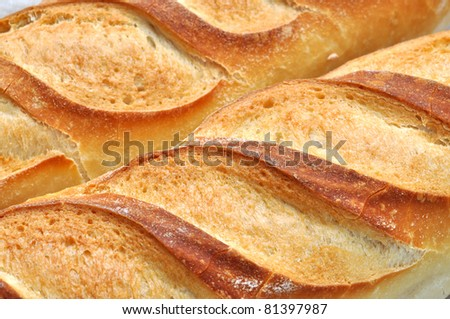 Freshly baked golden bread loafs in full frame