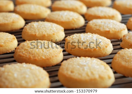 Freshly baked sugar cookies on cooling rack.  Closeup with extremely shallow dof.   - stock photo
