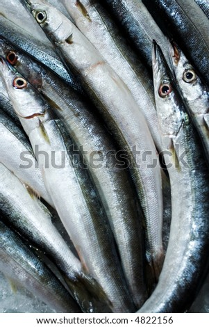 Freshly caught fish at the market for sale - stock photo
